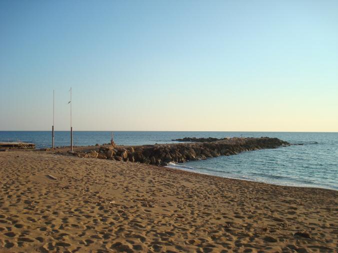201104_Paphos_Ledra_Beach_Coral__20_-1