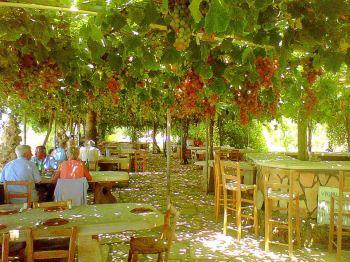 Art-En-Route Cyprus
