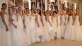 WOW Bridal - Wedding Dresses & Bridesmaids