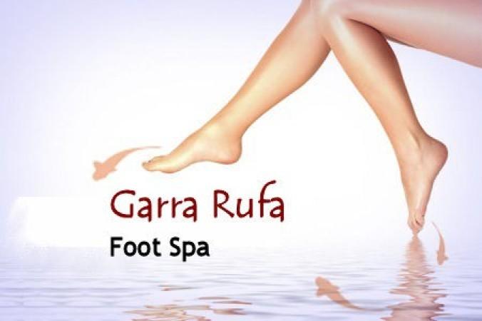 21 09 2011 garra rufa fish foot spa treatment plus for Fish foot massage
